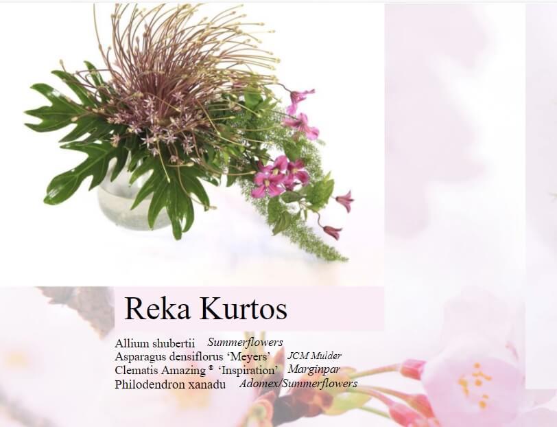 Floral Fundamentals